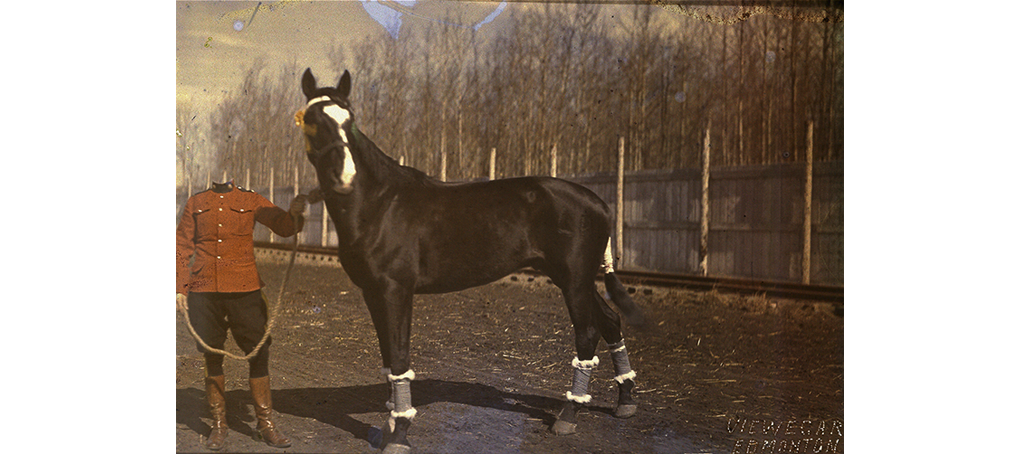 my commons 05 caballo beheaded Jose camara